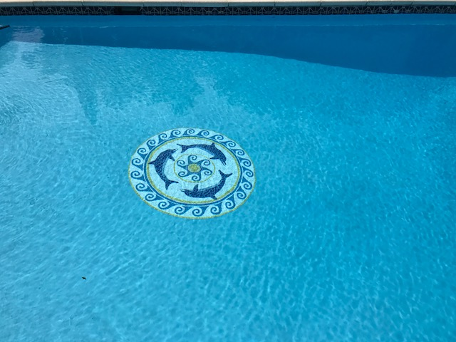 Pool Pianted with Ultra Poly One Coat, with Chasing Dolphins Graphic Mosaic Mat.