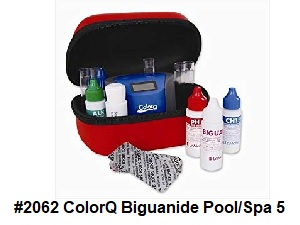 #2062 ColorQ Biguandie Pool/Spa 5